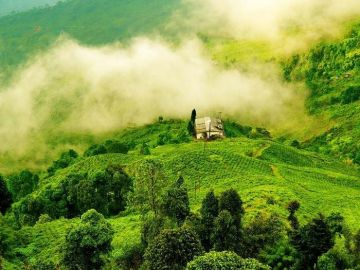 HAVE AN ADVENTUROUS DAY OUT AT DARJEELING.