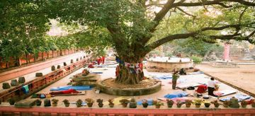 BEST BEAUTIFUL TOURIST PLACES IN BODHI TREE
