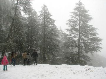 SHIMLA ADD PURITY AND WHOLENESS TO THE NEW BEGINNING