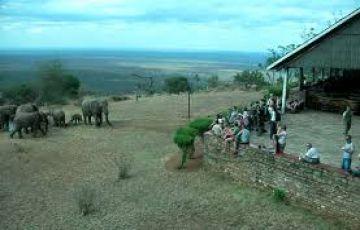 7- DAYS-AMBOSELI / TSAVO WEST WILDLIFE SAFARI IN KENYA