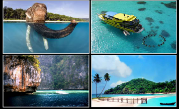 Popularity Magical Andaman with Neil Island Stay Winter Special