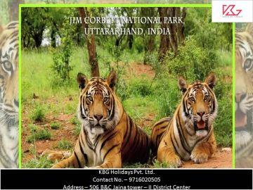 Uttarakhand Package for 7N and 8D