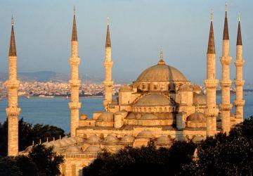 RADIANT TURKEY