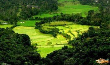 4N/5D Mysore Coorg Tour Package