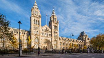 A Week in London Luxury Tour Package