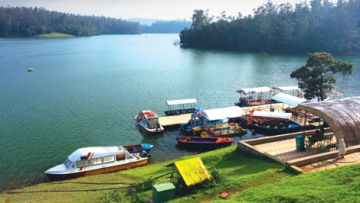 Honeymoon Offer Ooty Mysore Travel Package