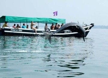 Island Trip in Goa