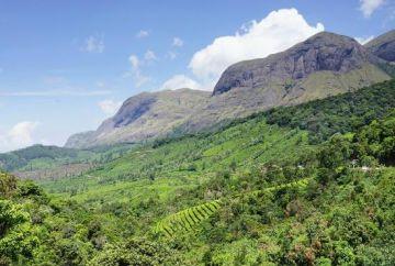 Dream Kerala