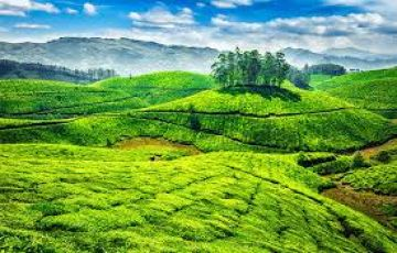 Munnar 3Nights 4 days