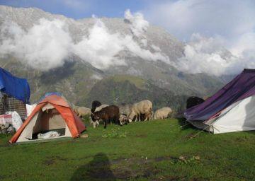 Himachal with punjab