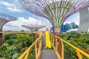 Serene Singapore - 3N/4D