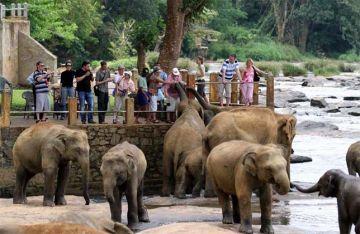 Round Trip to Lanka in Ten Days