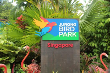 4N5D Singapore with 4 in 1 Wild Parks