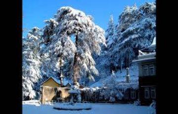 Shimla & Manali - 06 Days