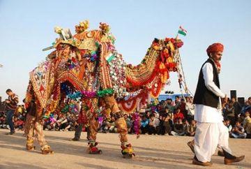 TPJ - 192 colorful  rajasthan  tour