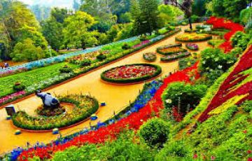 Mysore Coorg Ooty Tour Package