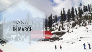 Go Manali with Low Bduget