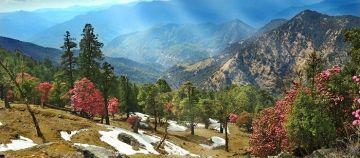 Uttarakhand summer special  tour package