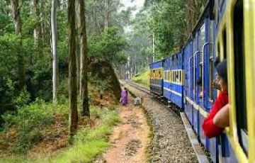 Vacations  Banglore  Mysore  Ooty  Coonoor  3 Nights 4 Days