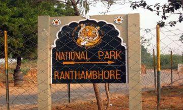 WILDERNESS IN RANTHAMBHORE