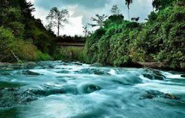 Thrilling Kerala