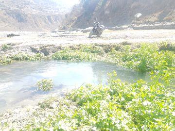 02 Nigh 03 days Dharamshala