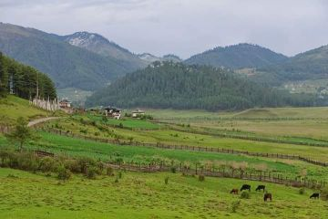 Bhutan Tours Package