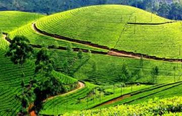 Tour package for Kerala 05 nights 06 days