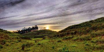 Nilgiri Hills Magic with Karnataka