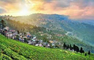 Darjeeling-BEST OFFER