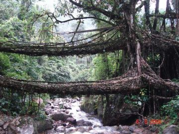 Arunachal - Assam - Meghalaya _ Best Offer