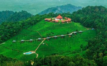8 nights/9 days Wayanad with Mysore Ooty and Beautiful Coorg