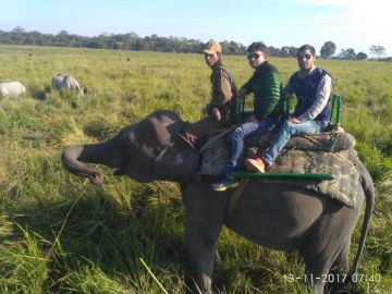 GUWAHATI SHILLONG KAZIRANGA TRIP