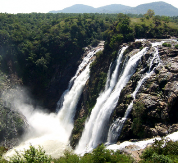 Best Wildlife Sanctuary and Trekking Package OOty to Wayanad For 2N/3D