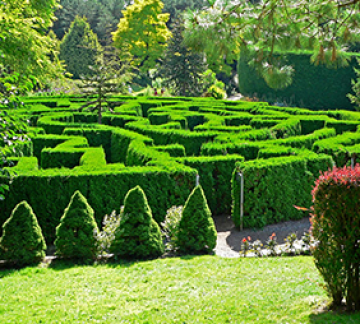 Dazzle with Bangalore to Ooty tour for 2N/3D