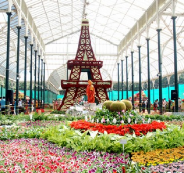 Wonderful Bangalore, Ooty and Mysore Package For 3N/4D