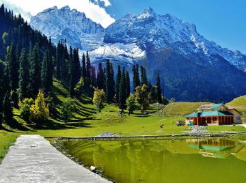 6 Days Kashmir Shreenagger Gulmarg Best Tour Package