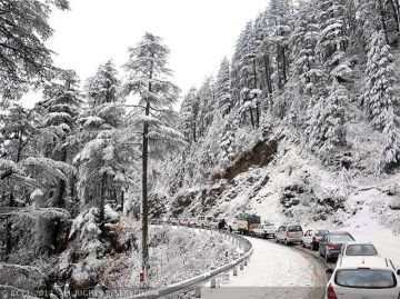 SEPICAL HIMACHAL FAMILY PACKAGE