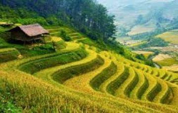 7 Days Gangtok Darjeeling Pelling tour Package