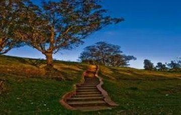 Coorg Ooty Tour from Bangalore by Car - 4 Days