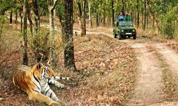 WHIMSICAL JIM CORBETT TOUR PACKAGE FROM DELHI