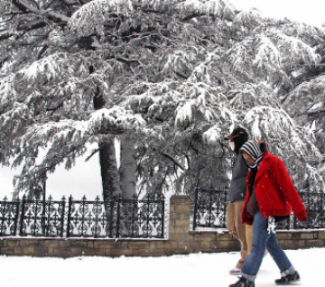 AMAZING HONEYMOON PACKAGE OF SHIMLA AND MANALI TOUR FOR 2N/3D
