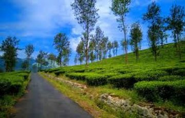 Coorg Mysore Coorg Kabini Wayanad Tour from Bangalore by Car - 8 Days