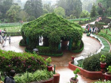 Mysore Ooty Tour from Bangalore - 3 Days