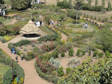 Indore/Bhopal to Pachmarhi Tour 3N/4D