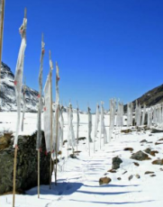 Lachen to Lachung Romantic Tour Package For 1 Nights and 2 Days