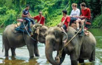 Trip To Captivating Coorg
