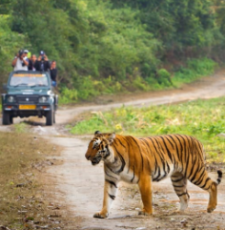 Nainital Tour with Jim Corbett For 4 Nights And 5 Days
