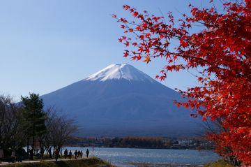 Week In Japan- UNESCO Heritage Tour