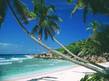 31St December Goa Special Offer 7N Only @2999 INR | Call 9818705209|TriFete Holidays Pvt. Ltd, Versova Mumbai